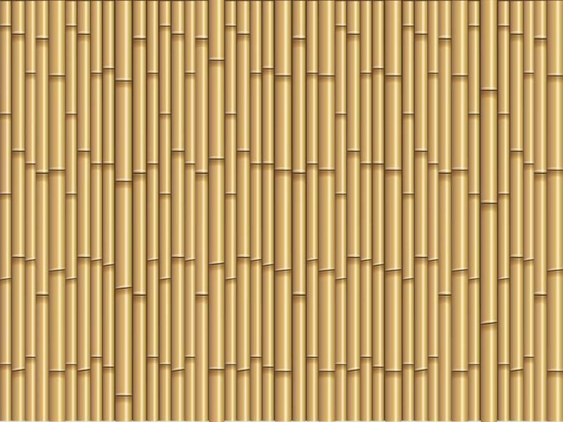 Bamboo Clip Art Backgrounds