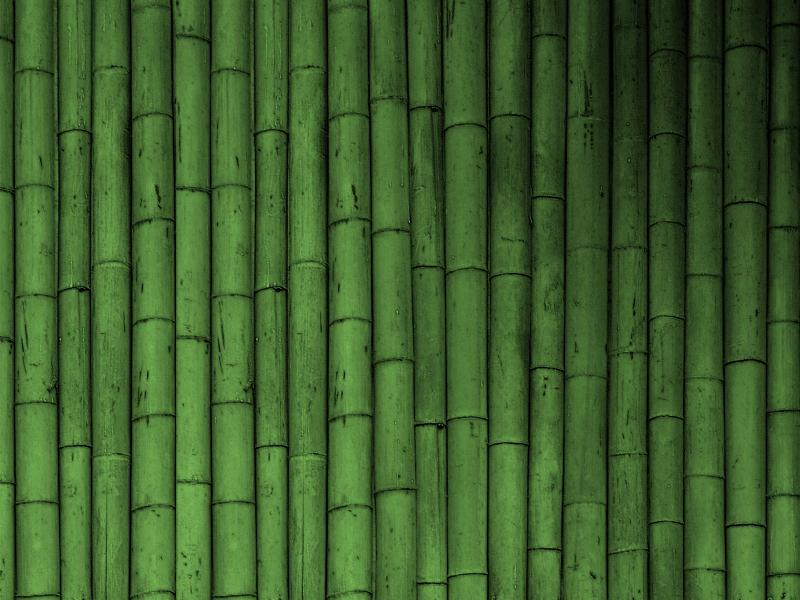 Bamboo Clip Art Backgrounds