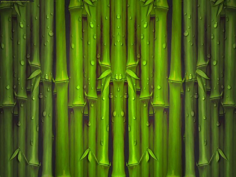 Bamboo Textured Clip Art Backgrounds