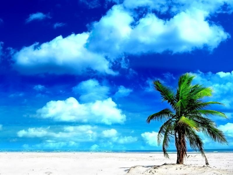 Beach Good Morning Art Backgrounds for Powerpoint Templates - PPT ...