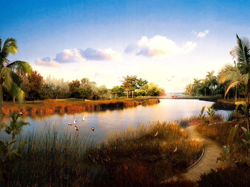 Beautiful Safari Backgrounds