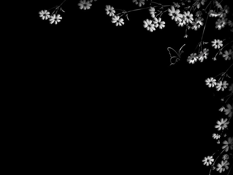 Black and white flower frame image backgrounds for powerpoint black and white flower frame image backgrounds mightylinksfo