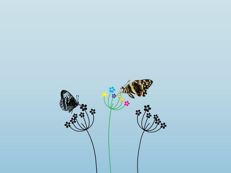 Butterfly and Summer Flowers PPT Backgrounds