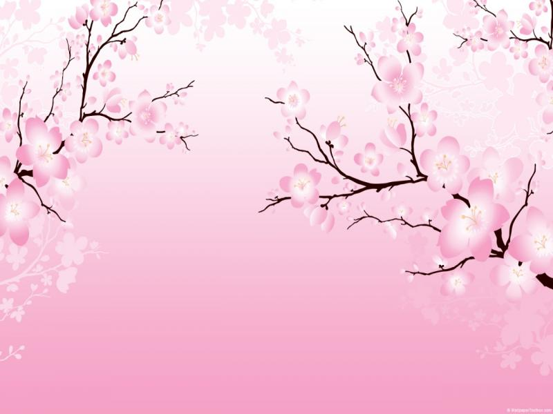 Cherry Blossom Design Backgrounds