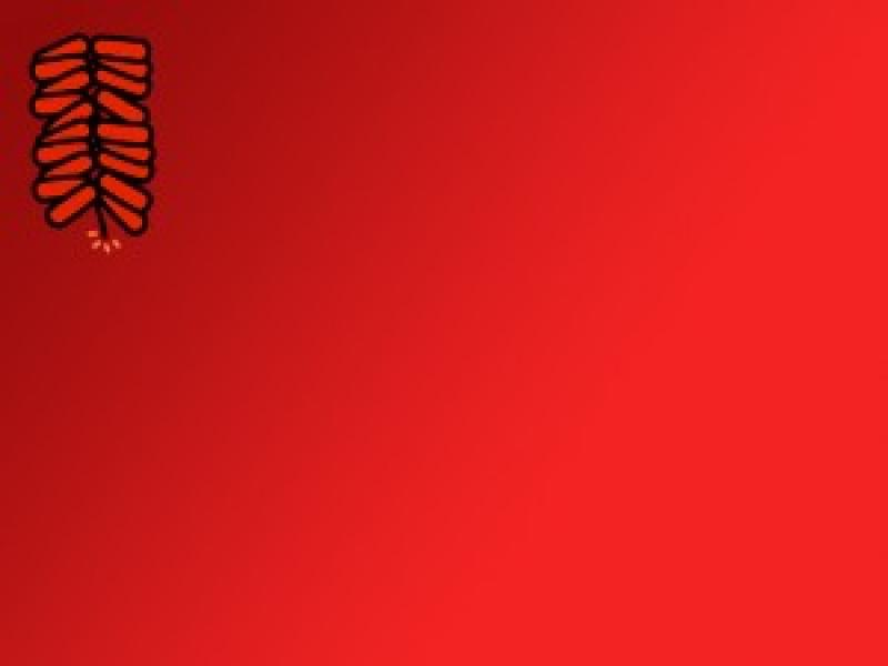 Chinese For Free Chinese New Year Photo Backgrounds For