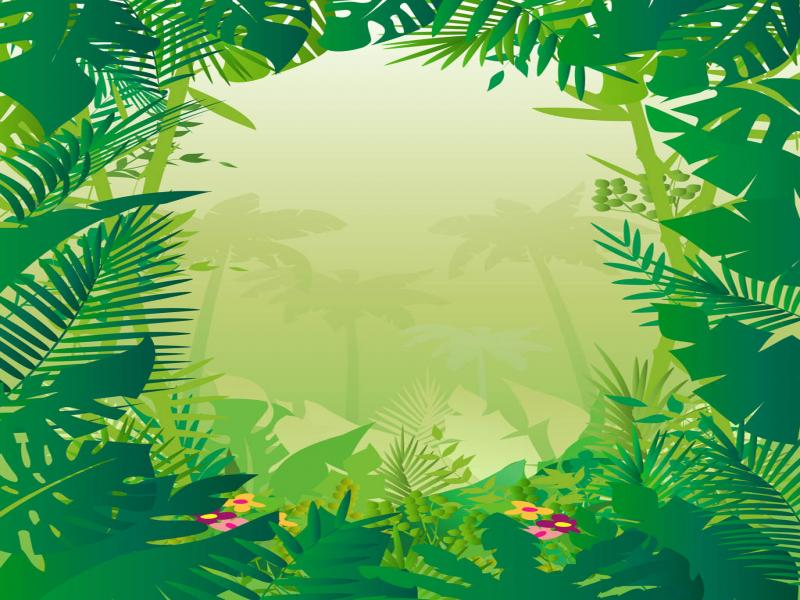 clipart jungle  u0026 pictures becuo photo backgrounds for