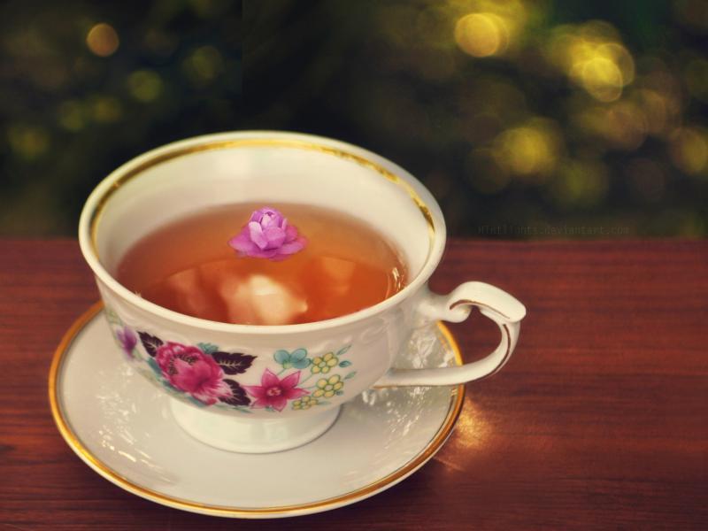 Cup Of Tea  AllWallpaper In #7357  PC  En Art Backgrounds