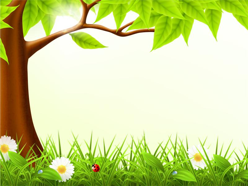 Cute Forest Spring Frame Backgrounds