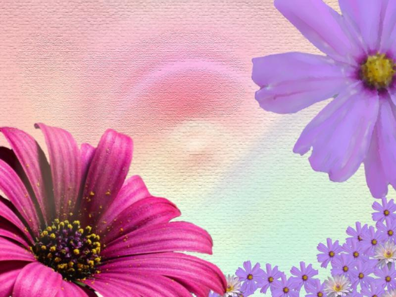 Cute Spring Cute Spring Cute Spring Cute Download Backgrounds