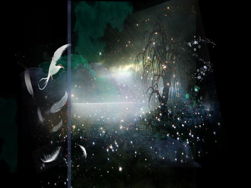 Dark Flower Magical Wallpaper Backgrounds