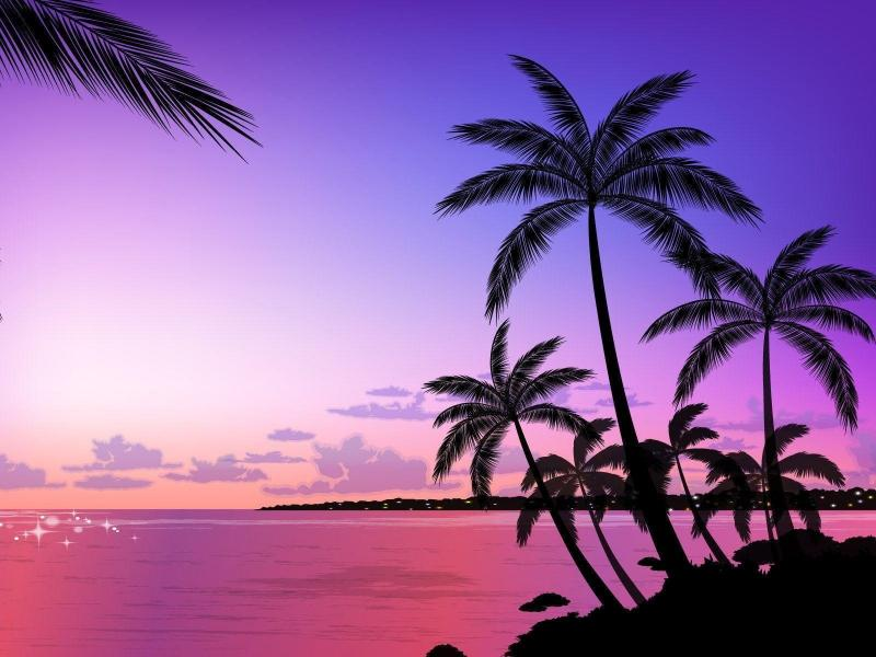 Dark Palm Tree Clipart Backgrounds