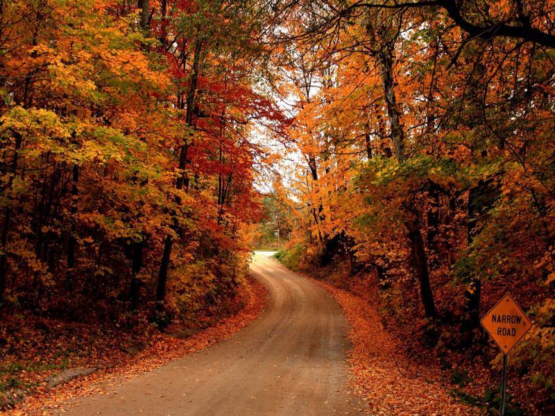 Desktops Autumn Road Desktops Clip Art Backgrounds