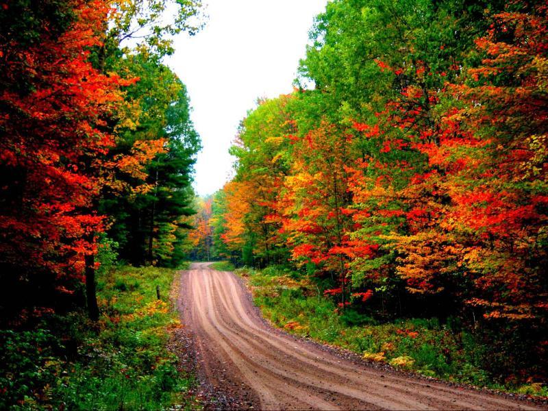 Desktops Autumn Road Desktops Clipart Backgrounds