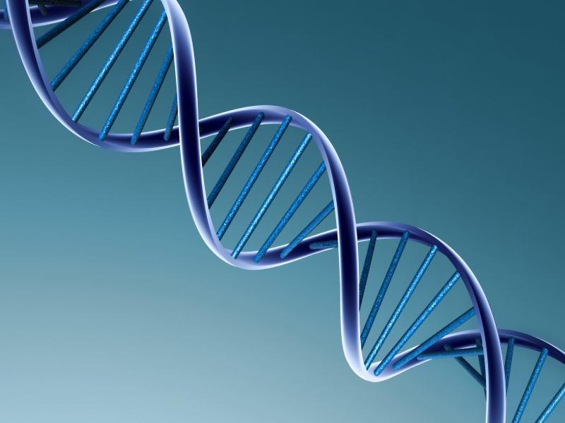 DNA 3d Border Backgrounds
