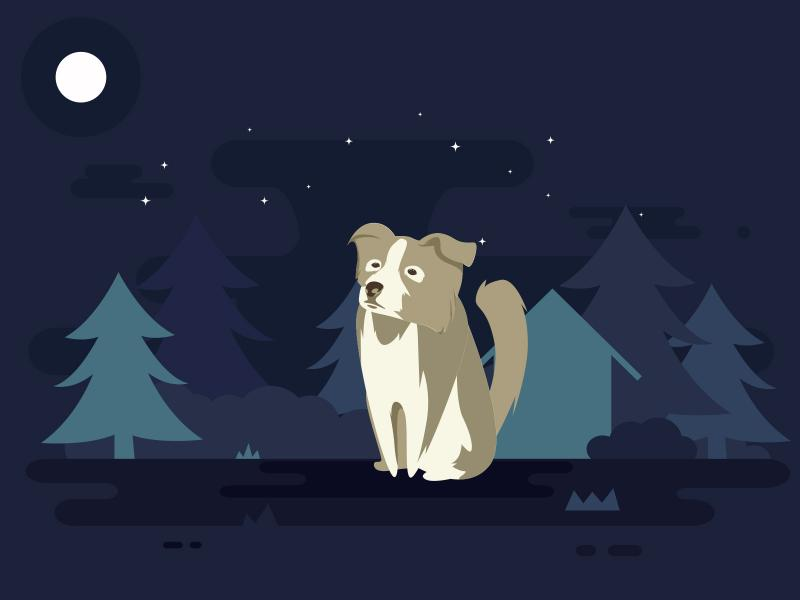Dog and Moon Backgrounds