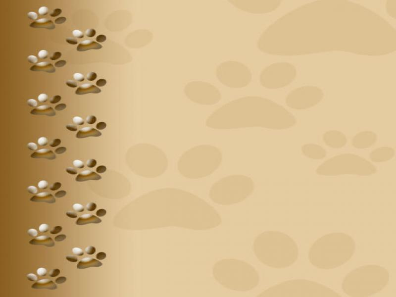 Dog Paw Dog Paw Print image Backgrounds for Powerpoint ...
