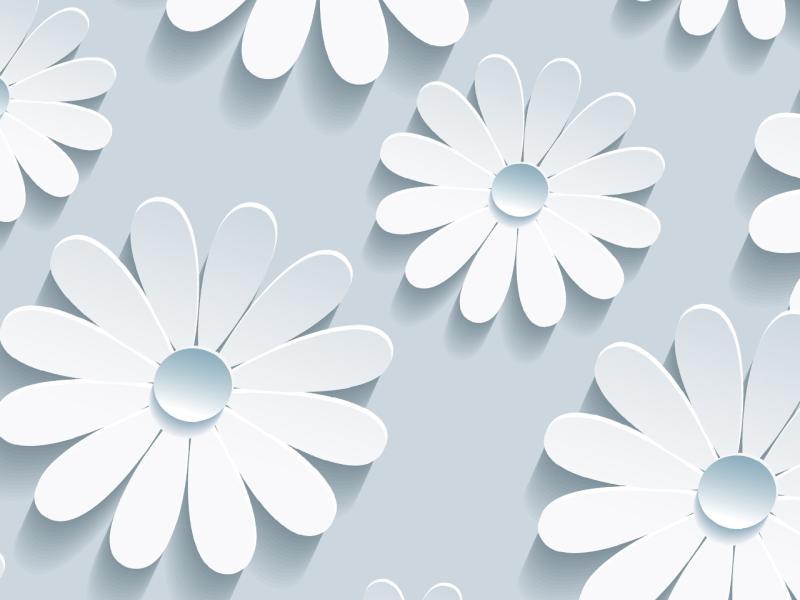 Elegant Flower Pattern On Blue Backgrounds