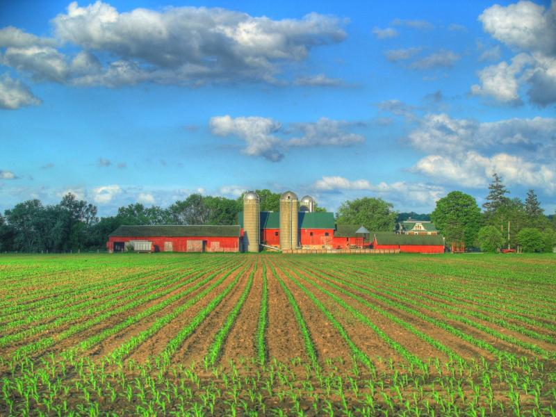 farm factory template backgrounds for powerpoint templates ppt