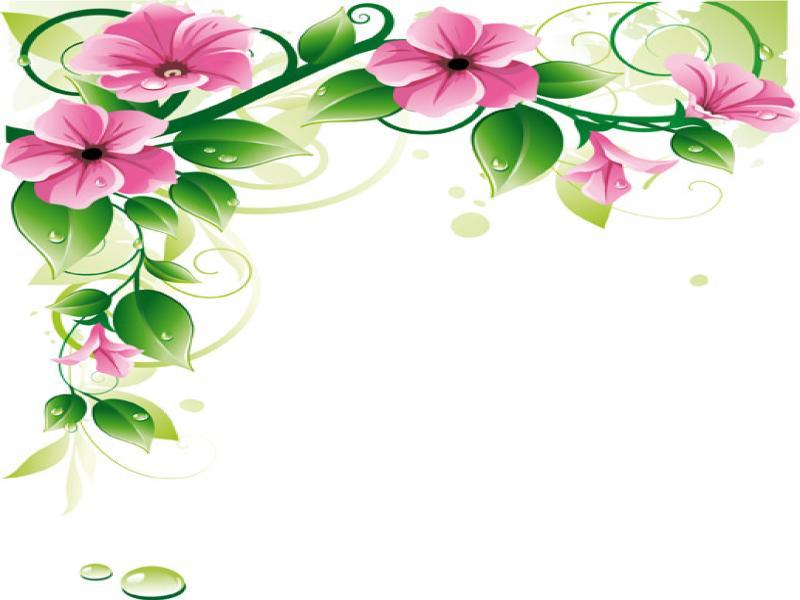 Floral Border Clip Art Backgrounds