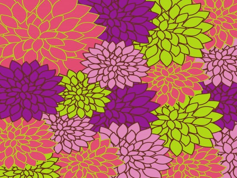 Floral Bright Colorful Free Stock Photo  Public Domain   Wallpaper Backgrounds