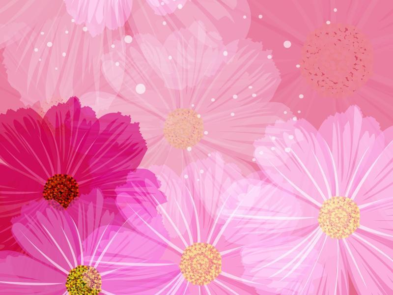 Floral Pattern  Flower Design  Floral 1600*1200 Design Backgrounds
