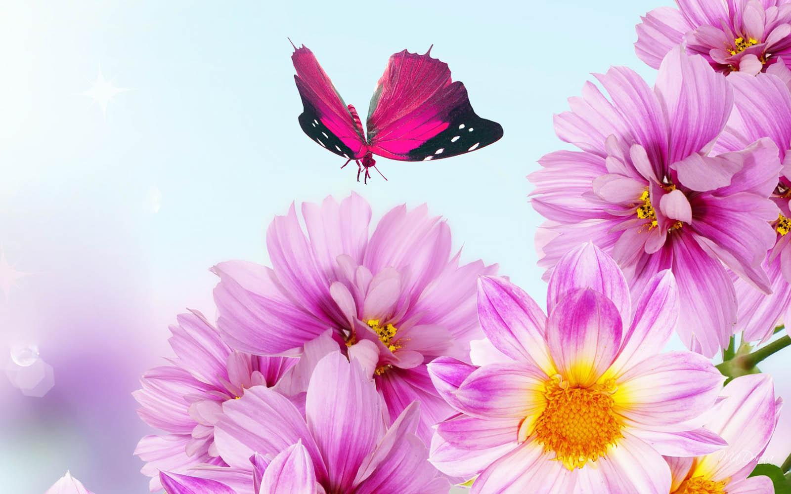 Flower  Desktops Art Backgrounds