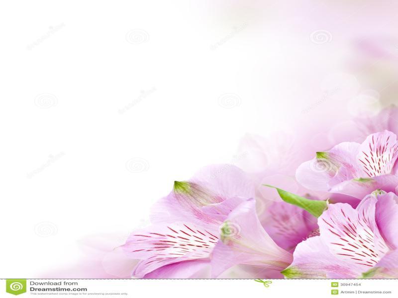 flower border design backgrounds for powerpoint templates