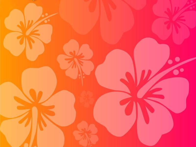flower pink orange hawaiian wallpaper backgrounds for