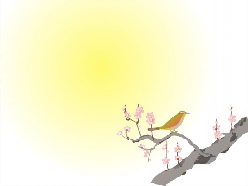 Free Beauty Bird For Animal Design Backgrounds