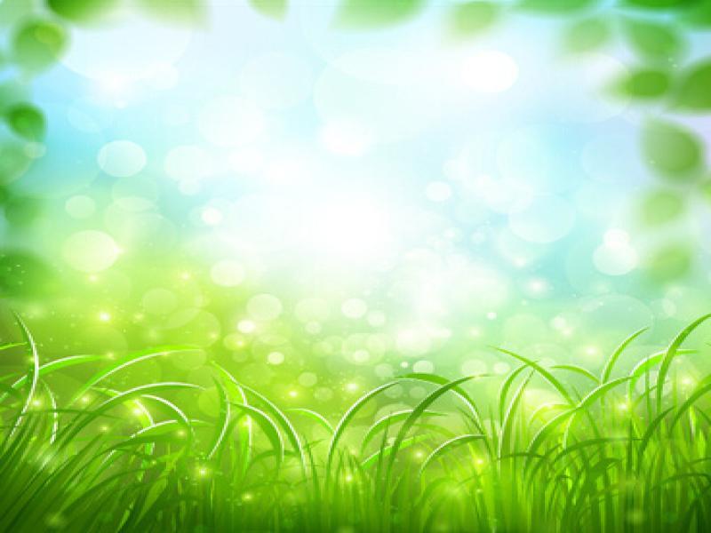 Free Green Vector Slides Backgrounds