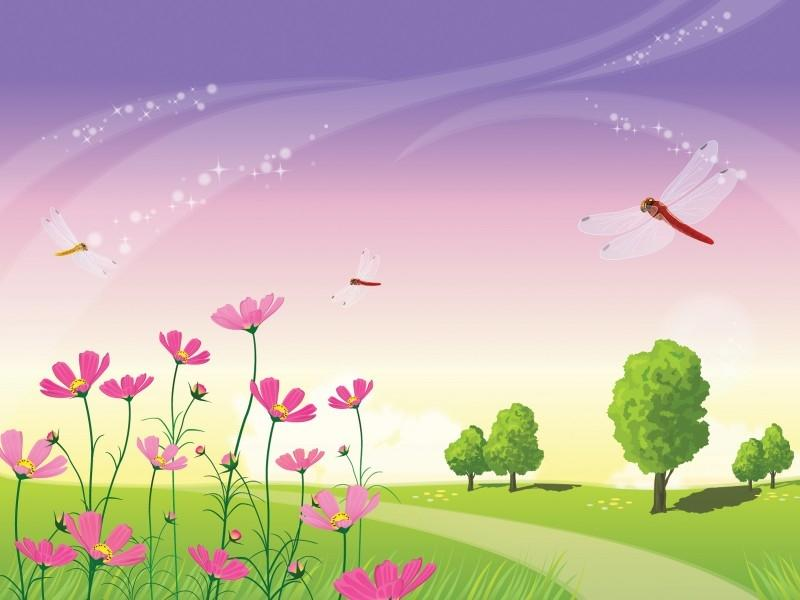 Fuchsia Magenta Templates Backgrounds