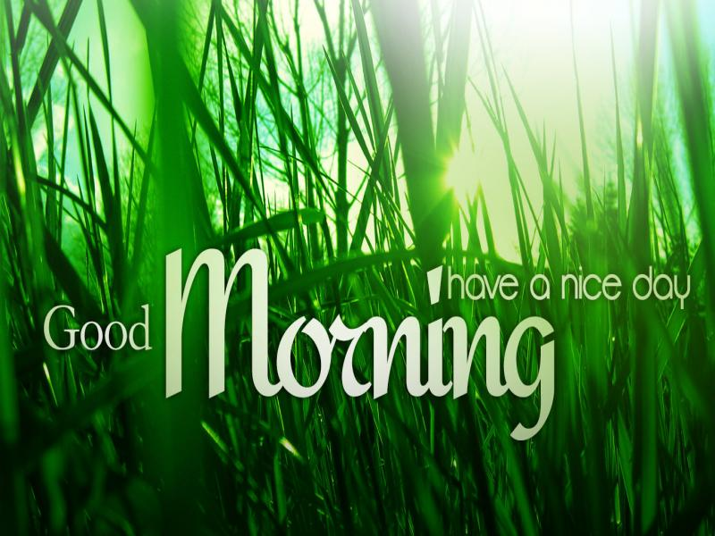good morning have nice day presentation backgrounds for