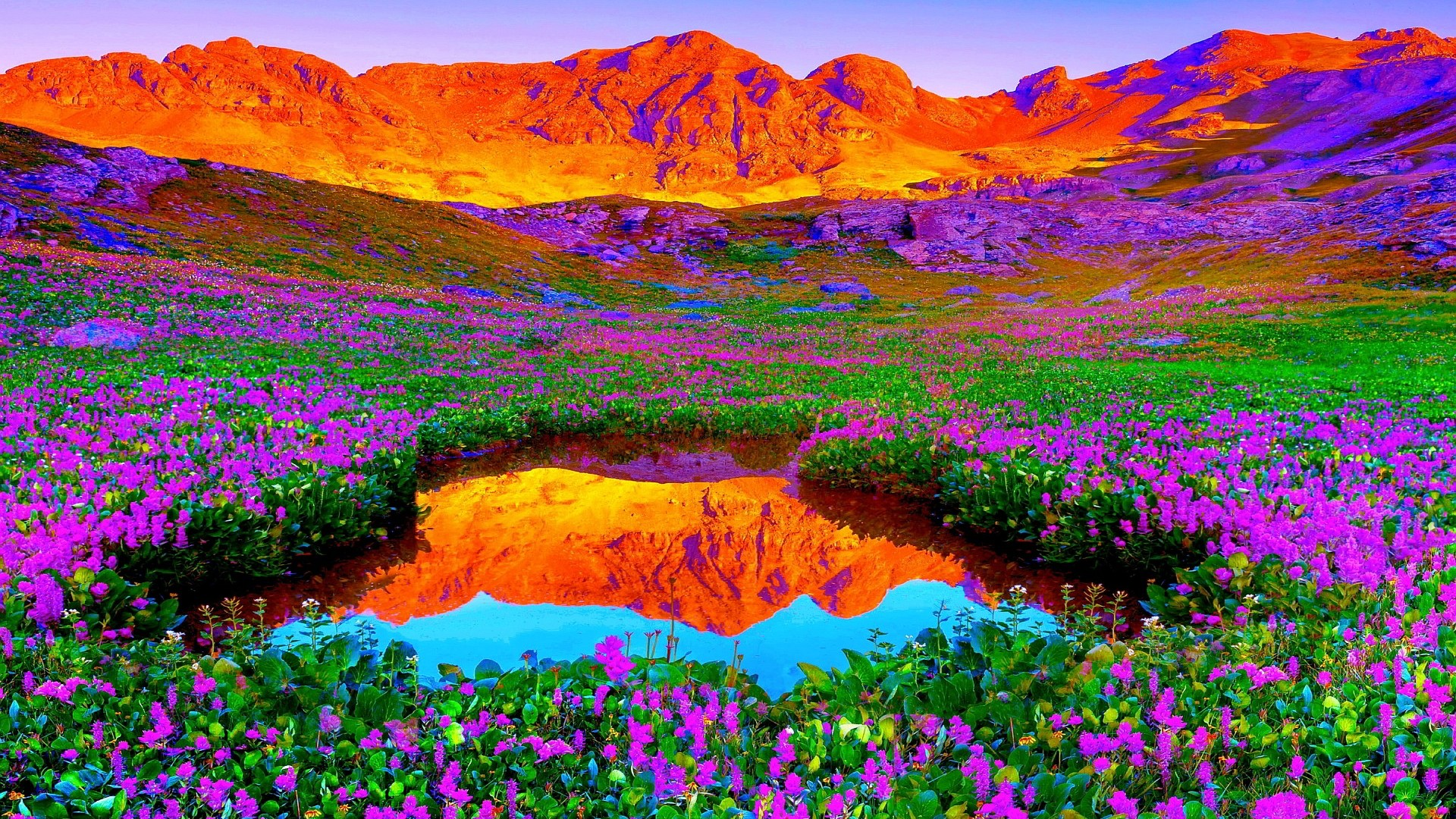 Gorgeous landscape colors Backgrounds