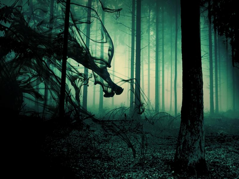 Gothic Poe Dark Horror Macabre Scary Creepy Spooky Occult
