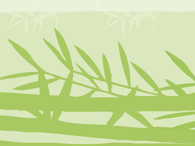 Green Bamboo Backgrounds