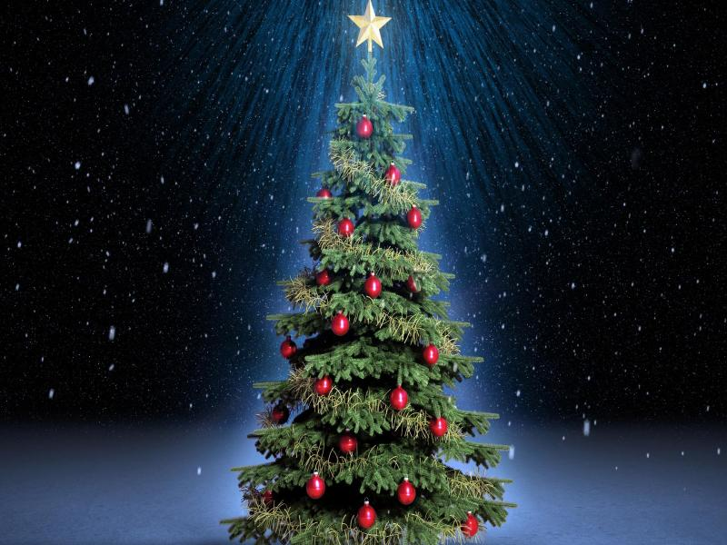 Green Christmas Tree Backgrounds