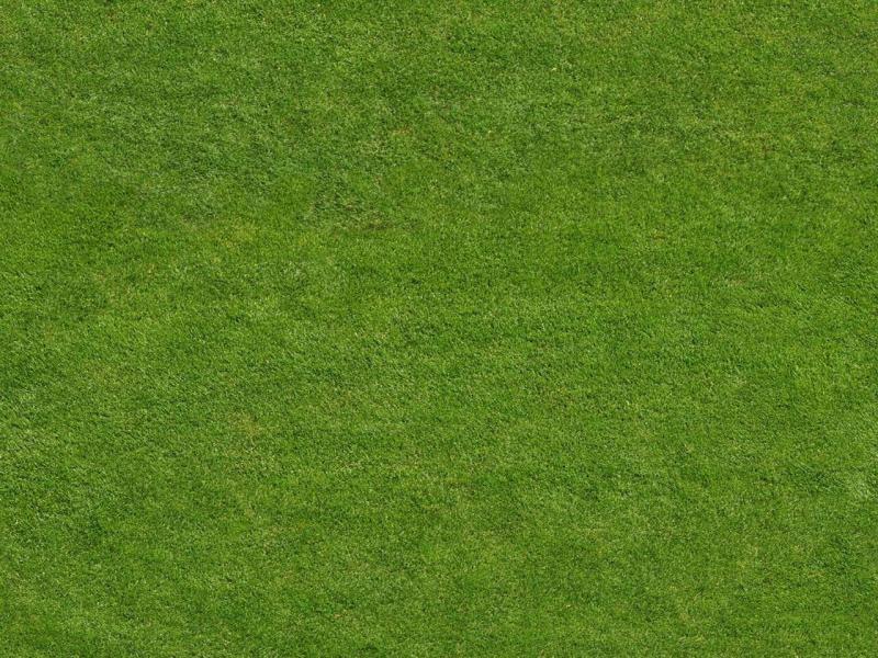 Green Field Sports Art Backgrounds