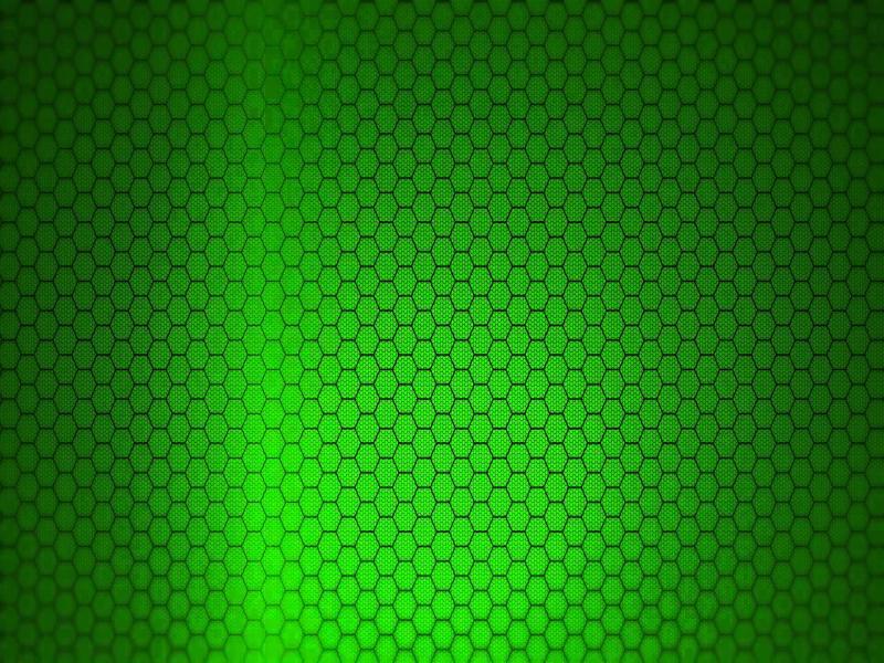 Snake Skin Seamless Pattern Black on White Vector Clipart Images