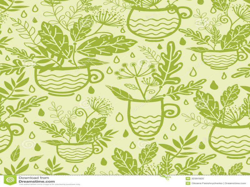 Green Tea Cups Design Backgrounds