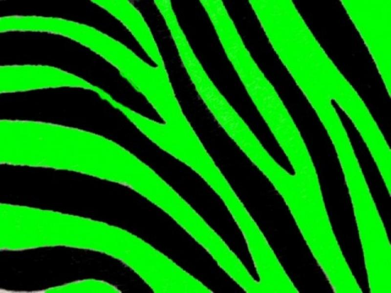 Green zebra print categorypets animals resolution480x360 tags green zebra print categorypets animals resolution480x360 tags graphic backgrounds toneelgroepblik Images
