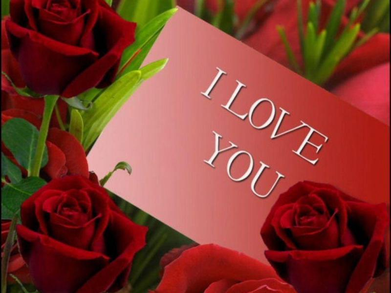 I Love You Red Roses Art Backgrounds
