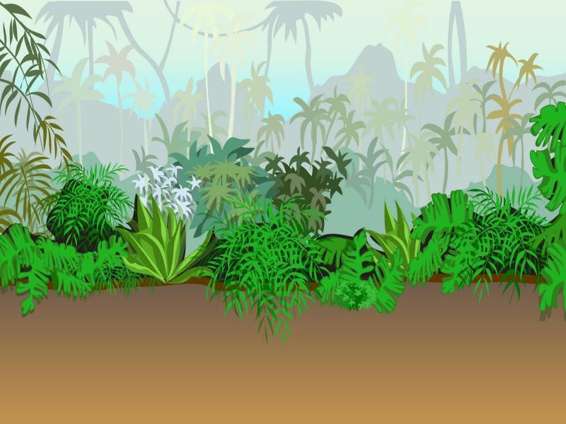 Jungle Jpg Template Backgrounds