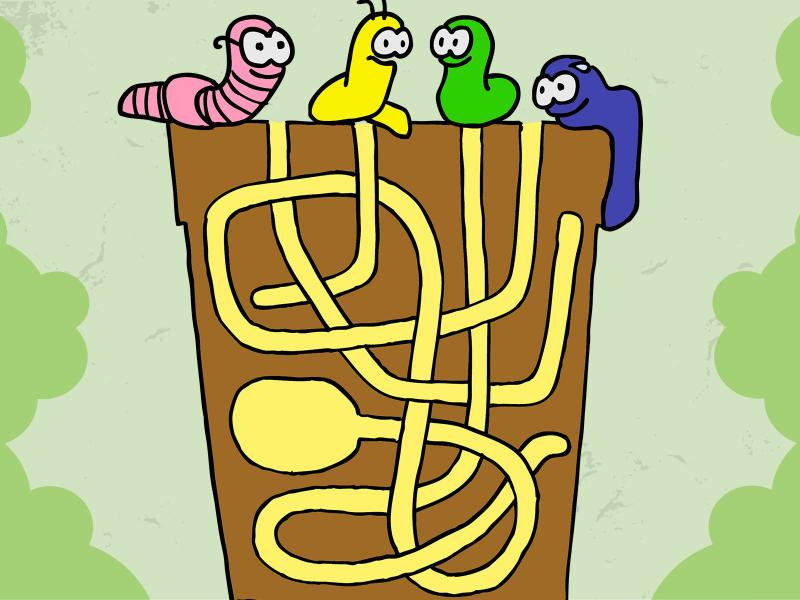 Labyrinth and Worms Backgrounds