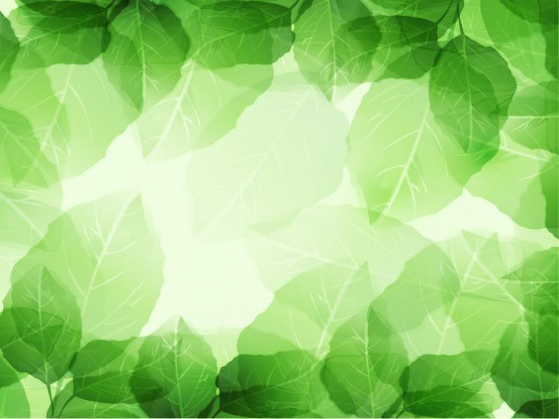 leaf leaves textures backgrounds for powerpoint templates