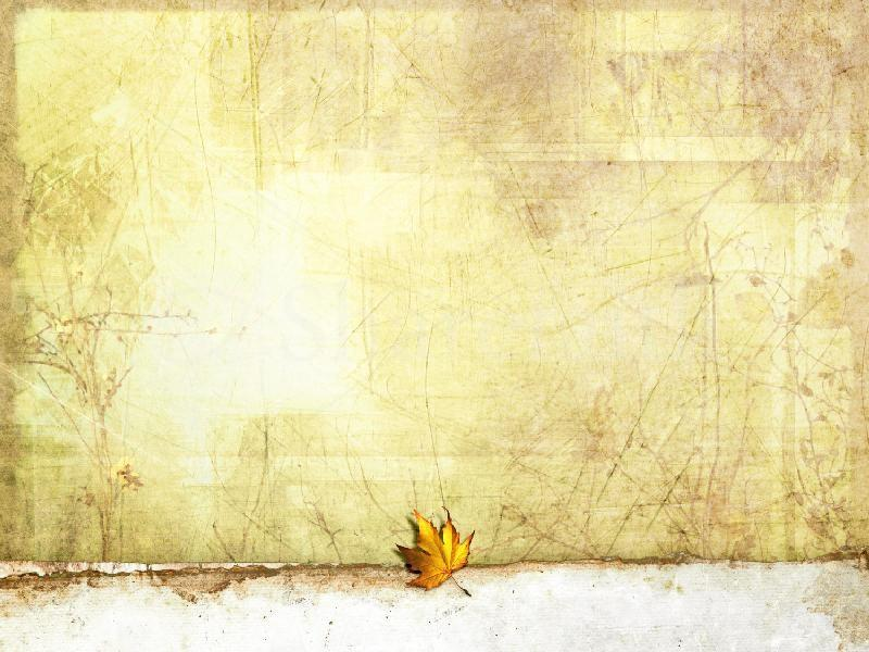 Leaf Unique image Backgrounds