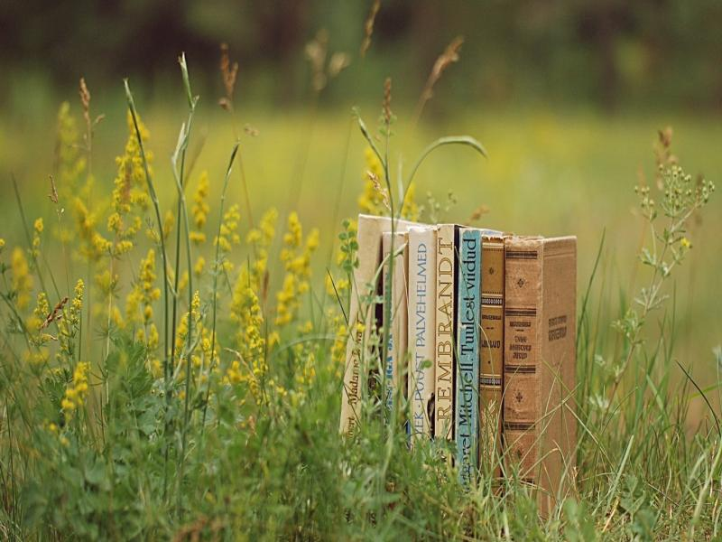 Natural Book Backgrounds