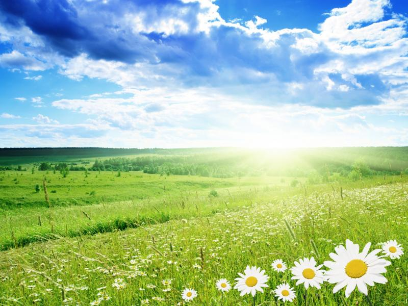 Nature Good Morning Clipart Backgrounds