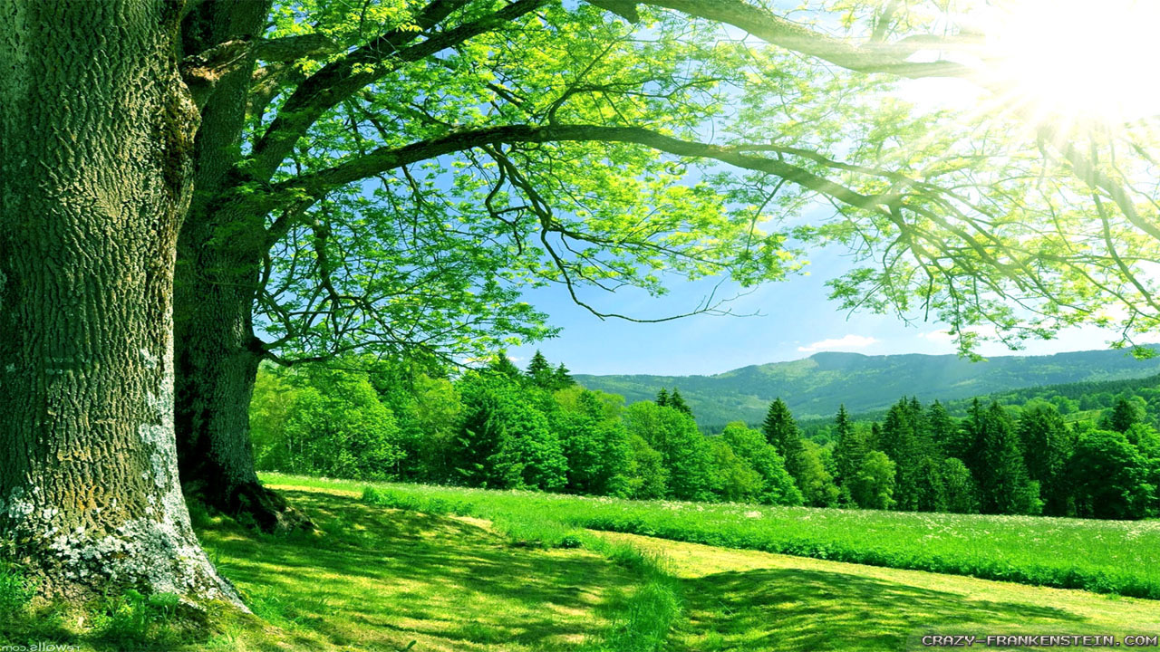 nature high resolution backgrounds for powerpoint