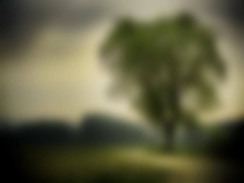 Nature Tree Blurry Graphic Backgrounds