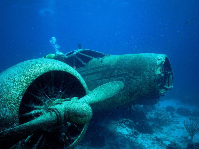 Ocean Underwater Photo Backgrounds